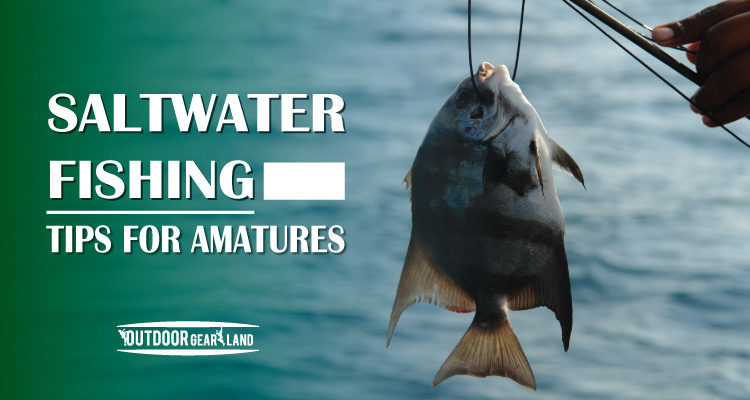 Saltwater Fishing Tips for Armatures