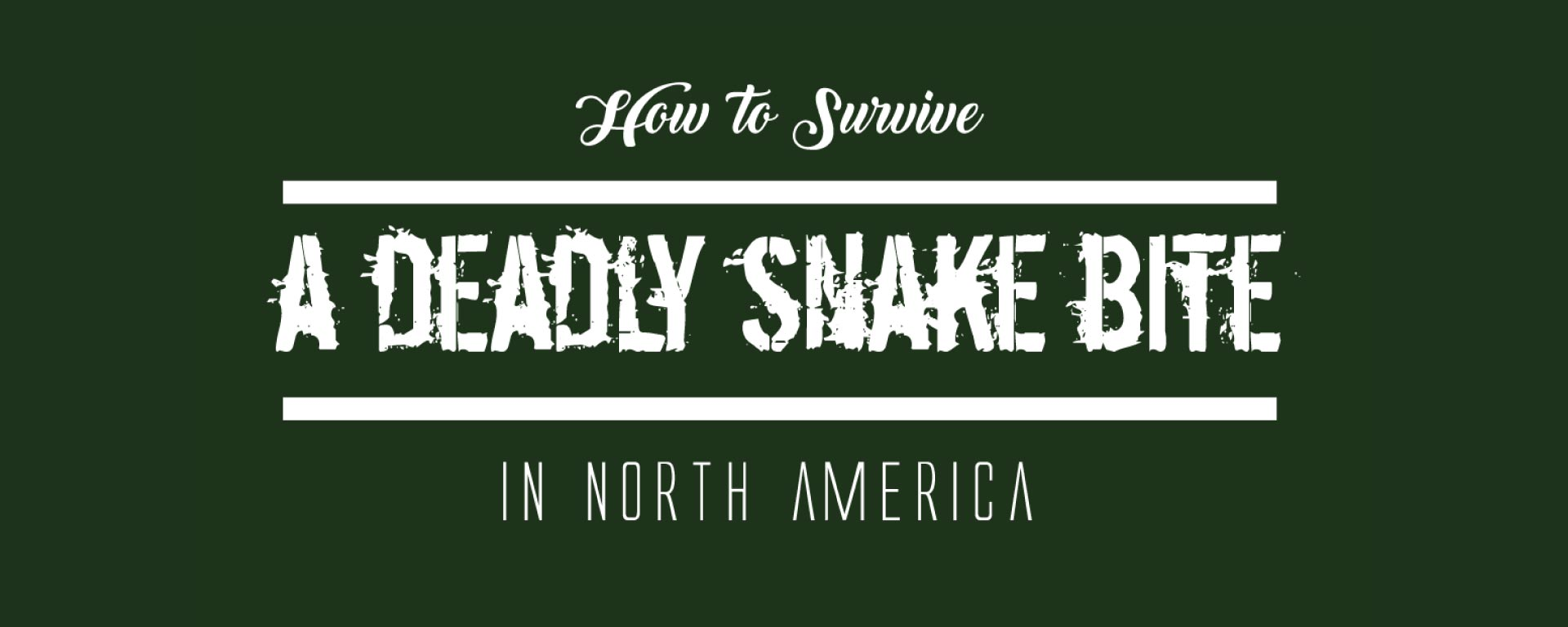 How to Servive a Deadly Snake Bite | Infographics